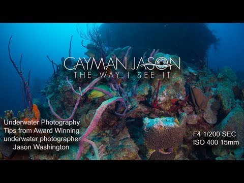Underwater Photography Tips With Cayman Jason- Pinnacle Diving At Ghost Mountain