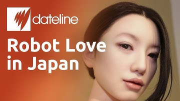 The Japanese robots used for companionship, household tasks and sex