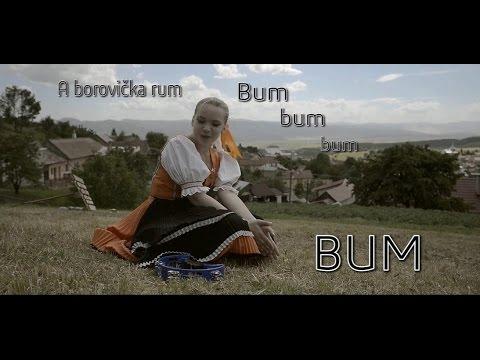 Ronix - Borovička & Rum |Lyrics
