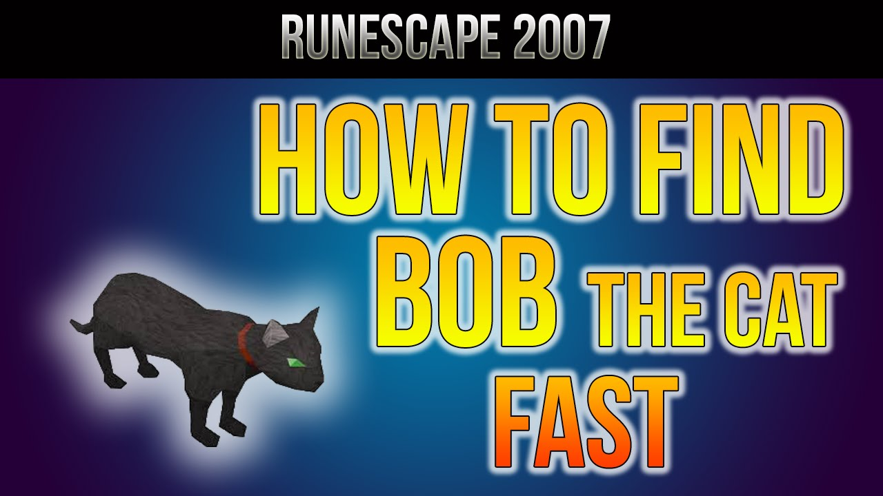 Rs07 How To Find Bob The Cat Hd Youtube