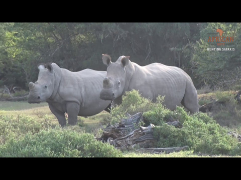 African Hope Hunting Safaris 2017 | South Africa |Eastern Cape