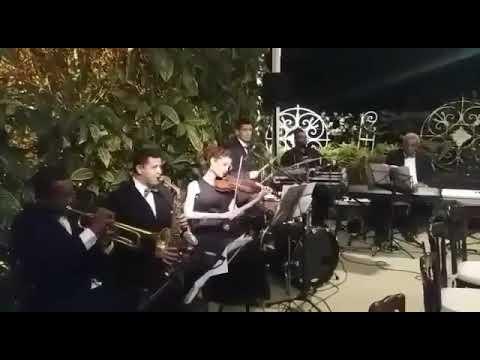Os Violinos Moza