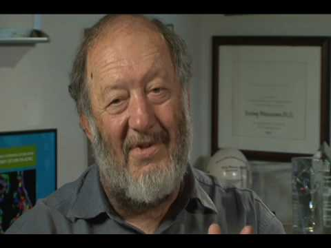 Irv Weissman: Differences between Adult and Embryonic Stem Cells