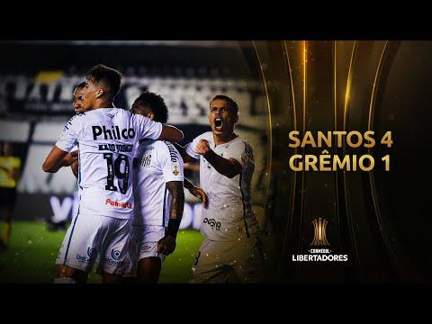 Santos Gremio Goals And Highlights