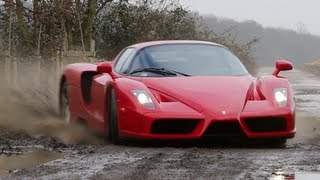 The ferrari enzo wrc