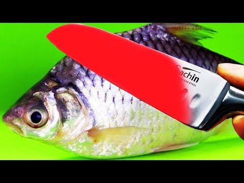 EXPERIMENT Glowing 1000 Degree KNIFE VS FISH Snapper