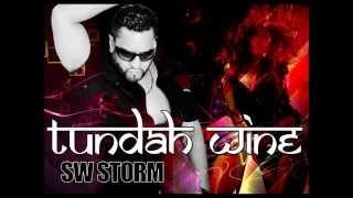TUNDAH WINE - SW Storm [Turban Riddim] (Chutney Soca 2014)