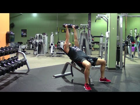 weight training for beginners in the gym  hasfit beginner