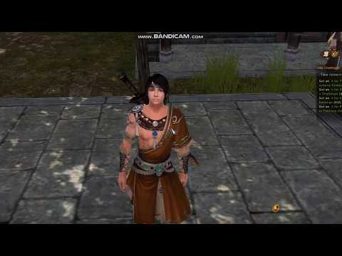 Age Of Wushu - Internal Skills + Interface - Guide