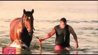 La baignade en pleine mer des champions de Gai Waterhourse en Australie