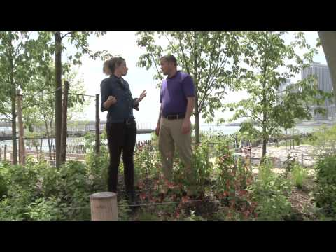 GardenSMART Episode 3205 Brooklyn Bridge Park