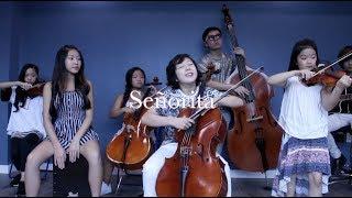 Shawn Mendes, Camila Cabello - Señorita - Joyous String Ensemble