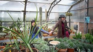 Join us on a visit to the Cacti & Succulent Collection at Belfast Botanic Gardens