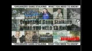 Organized Gang Stalking WHAT YOU NEED TO KNOW