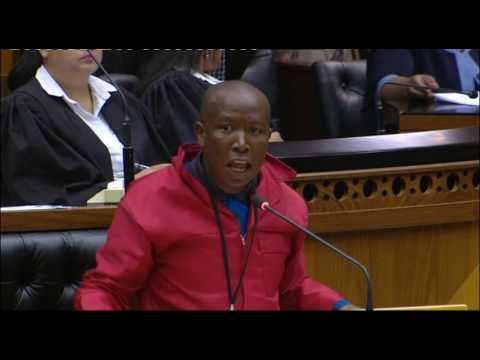 Julius Malema during a Parliamentary debate on elections