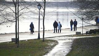 В Гидрометцентре пообещали тепло в Москве на 8 марта