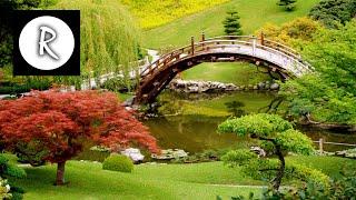 HEALING Music - 3 HOURS - Meditation, Sleep, Spa, Study, Zen, Yoga, Reiki, mind focus