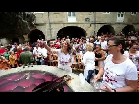 Sae viño da fonte de San Vicente, en Lugo