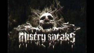 Watch Misery Speaks Sounds Of Brutality video