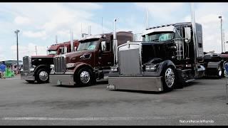 75 Chrome Shop Truck Show Wildwood Florida