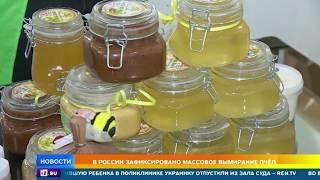 Лужков рассказал как спасает своих пчел от вымирания