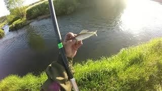 рыбачим на байроновке и д бирюса
