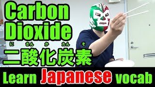 Japanese Lesson #5: Carbon Dioxide 二酸化炭素【にさんかたんそ】