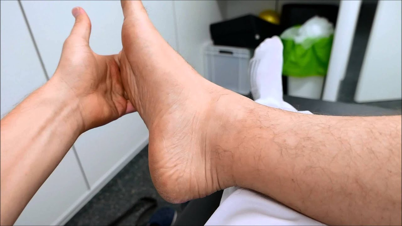 Músculos peroneos: localización y estiramiento - YouTube