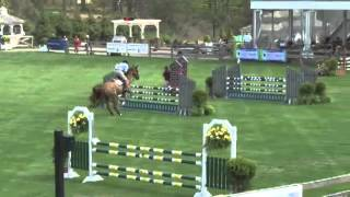 Video of SIMPLY BE ridden by ARIEL LESHEM from ShowNet!