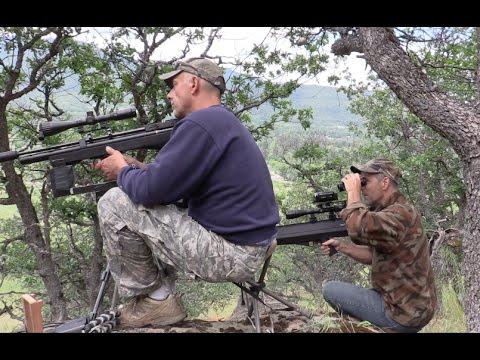 Oregon Ground Squirrel Hunt | .25 Hatsan + .357 Benjamin | Air Rifles
