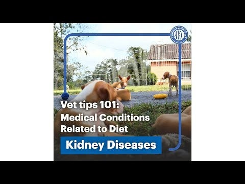 Medical Conditions tied to Diet - Kidney Disease