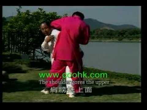 Du XinWu Natural Boxing DVD Series : Throwing Skill KF763coo