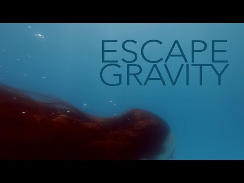 Faderhead - Escape Gravity (Official Music Video / with Lyrics)