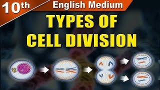 10 EM Types of Cell Division | Science 2 | Maharashtra Board | Home Revise