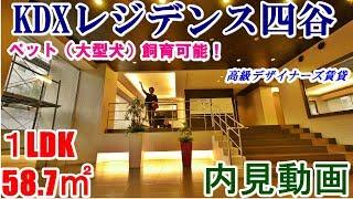 KDXレジデンス四谷・1LDK・58.7.㎡の内見動画です。大型犬飼育可能、ハ...