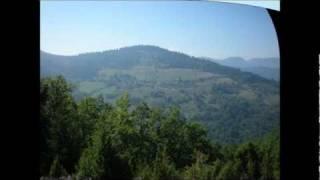 Oj livado rosna travo-oj Javore zelen bore