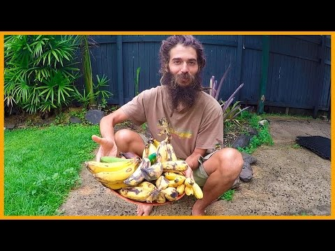 TASTING THE MANY BANANA VARIETIES IN TROPICAL CAIRNS AUSTRALIA