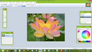 How to use Paint.NET image editor