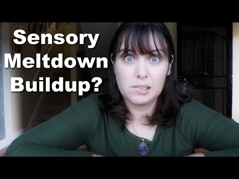 Autism and Unexpected Buildup to Sensory Meltdowns