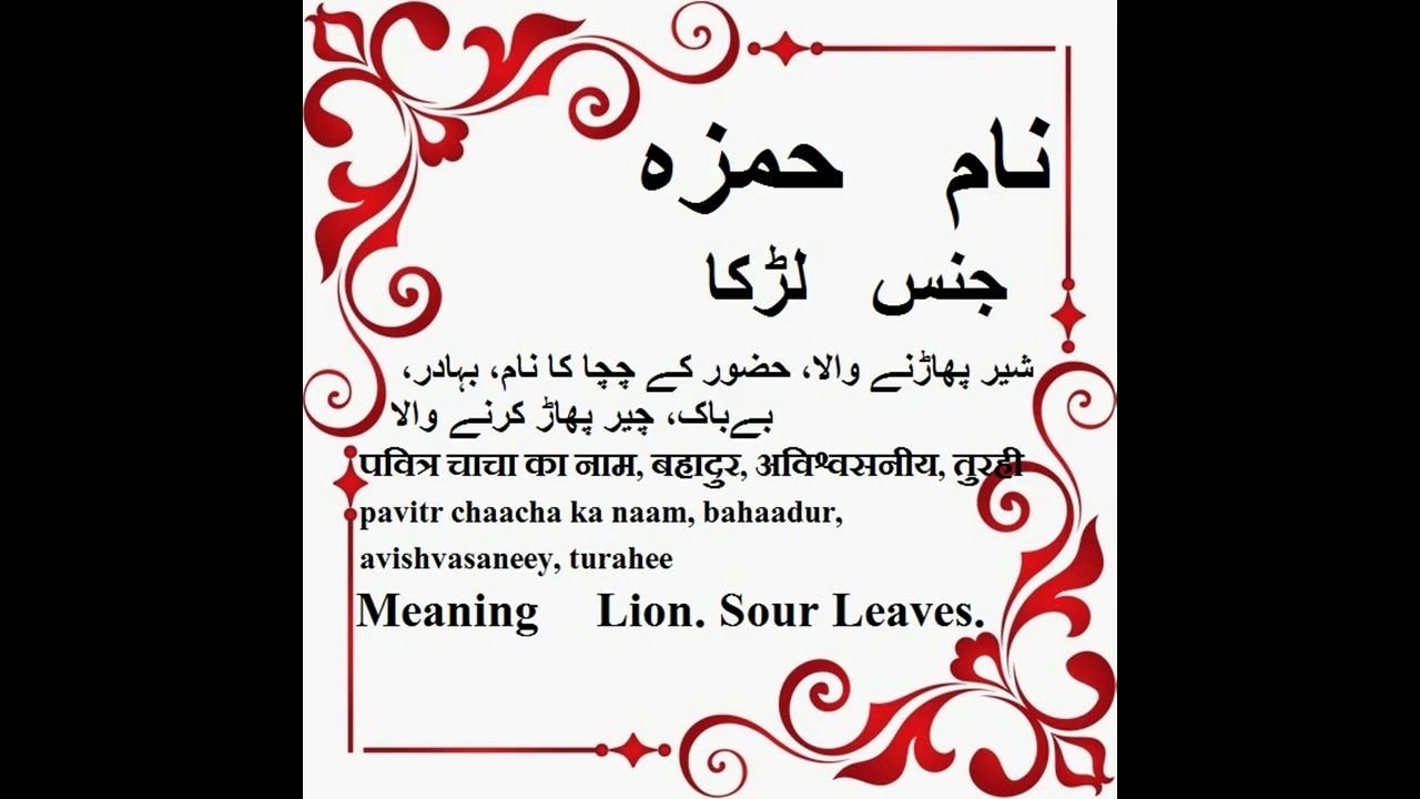 ameer hamza name