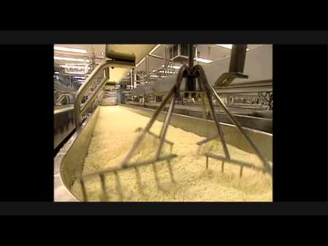 HOW IT'S MADE - Mozzerella Cheese (UK Version)