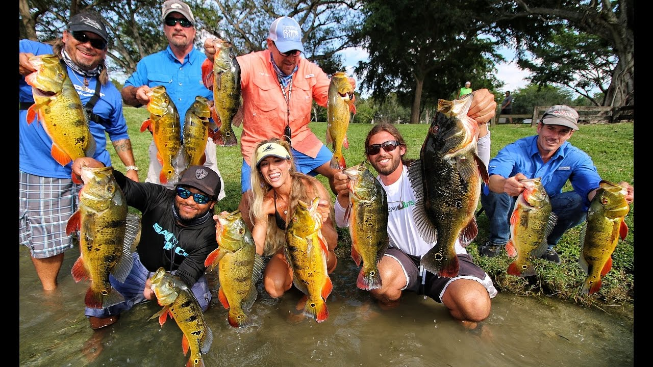 Florida peacock bass tournament ft darcizzle offshore for Bass fishing tournaments in florida