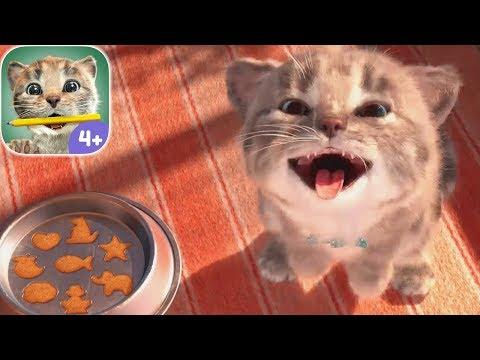 Play Fun Pet Animal Care Kids Games - Little Kitten Preschool - Educational Games for children