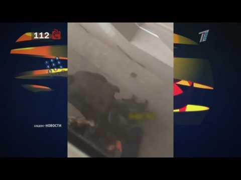 Шокирующие кадры избиения девушки попали в интернет
