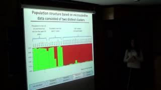 Population genetics of Phytophthora infestans