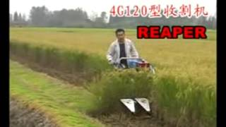 120type mini rice combine harvester/www.agriculturemachine.net