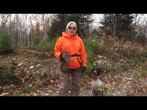 Grouse Hunting At Bowlin Camps In Maine
