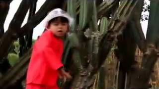 ADP Dimas Putra Ucing Sumput