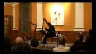 Baroque harp - Luz y Norte Musicale - Ribayaz