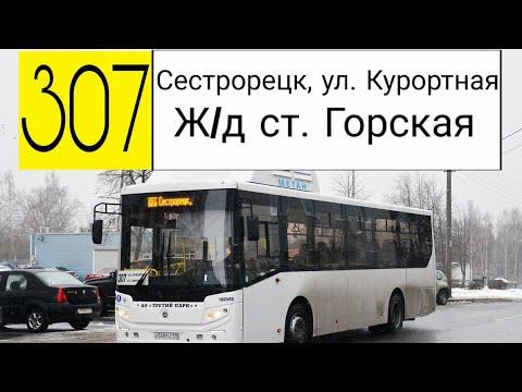 Как доехать до александровской больницы спб общественным транспортом